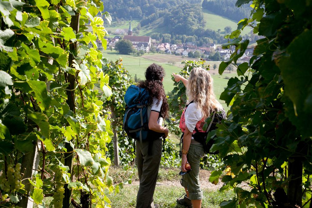 Wandern Zwei Frauen in den Weinbergen