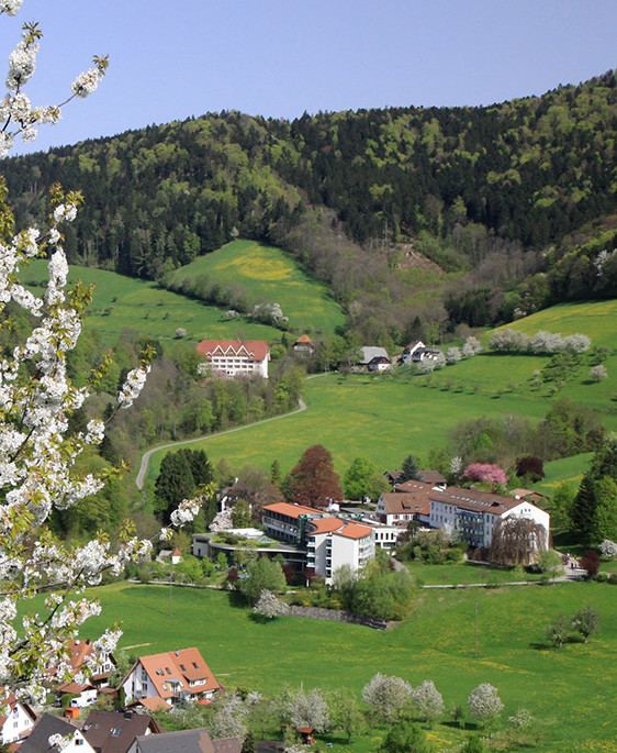 Frühling im Oberglottertal