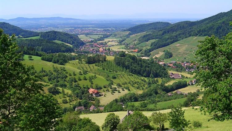 Blick vom Ahlenbach/Eichwaldweg nach Westen